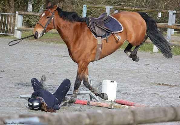 Challenge Interne Centre equestre Carhaix Finistere Bretagne